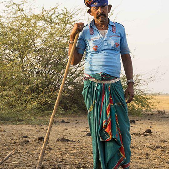 Bhairwad herder India
