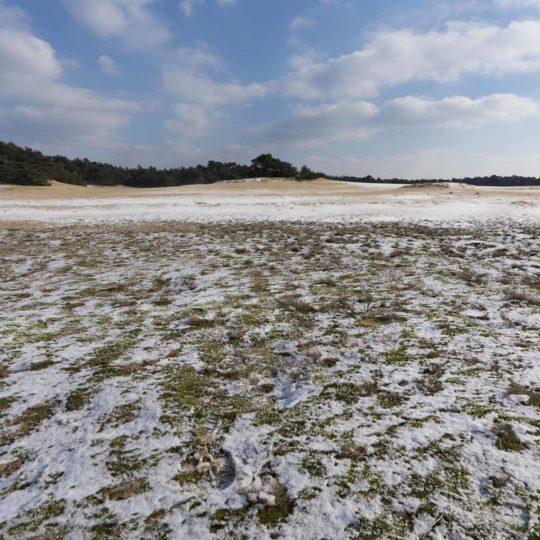 Wekeromse zand ijskoud in maart 2018